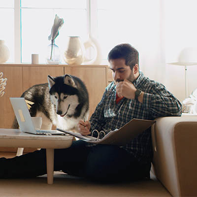There Are More People Working from Home than Ever